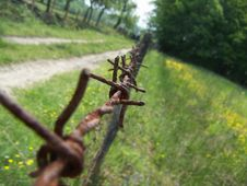 Bosnian Barb Wire Royalty Free Stock Images