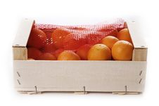 Free Clementines Stock Photography - 1505502