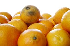 Free Clementines Royalty Free Stock Images - 1505619