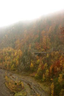 Free Autumn Mist Portrait Stock Photos - 1507153