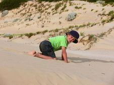 Free Playing In The Sandhills Stock Photos - 1507843