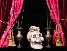 Free Skull Royalty Free Stock Image - 1508726