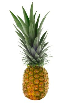 Free Pineapple Isolated On White Stock Image - 1509751