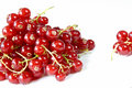 Free Red Currants Royalty Free Stock Photography - 15008427