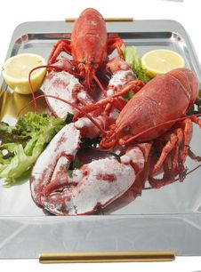 Free FRESH LOBSTER . Stock Images - 15000794