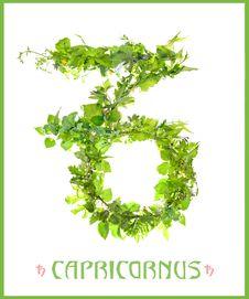 Constellation Capricornus Royalty Free Stock Image