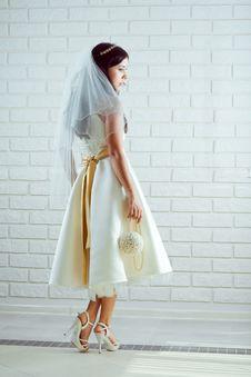 Free Young Bride Stock Photos - 15002853