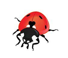 Free Vector Ladybird Stock Photo - 15003560
