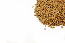 Free Buckwheat Royalty Free Stock Image - 15004256