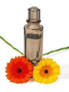 Free Perfume Flask With Flowers Stock Photo - 15005300