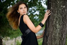 Free Woman Near The Tree Royalty Free Stock Images - 15005999