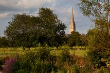 Free Salisbury Cathedral, Wiltshire, UK Stock Photo - 15007650