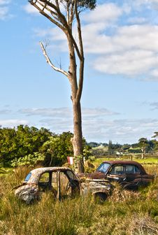 Free Abandoned Cars Royalty Free Stock Photo - 15008425