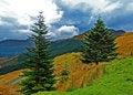 Free Mountains Of Scotland Royalty Free Stock Photo - 15018655