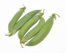 Free Pods Of Pea Royalty Free Stock Photography - 15011047