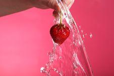 Free Fresh Strawberry Royalty Free Stock Photos - 15011198