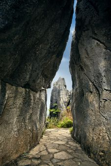 Free Stone Forest Royalty Free Stock Photos - 15013188