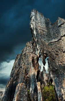 Free Stone Forest Royalty Free Stock Photo - 15013245