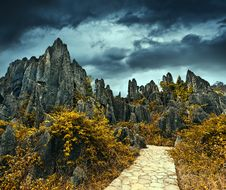 Free Stone Forest Royalty Free Stock Images - 15013429