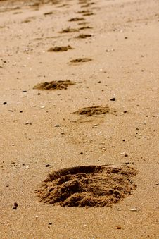 Free Footprints In The Sand Stock Images - 15013514