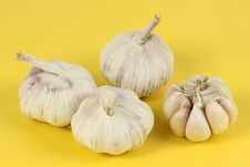 Free Garlic Stock Photography - 15016132