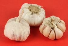 Free Garlic Royalty Free Stock Photography - 15016187
