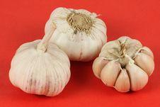 Free Garlic Royalty Free Stock Photography - 15016187