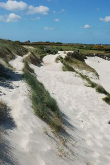 Free Dune With Marram Grass Royalty Free Stock Photography - 15016817