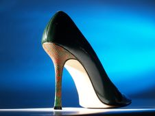 Free Italian Sensual Shoes Stock Images - 15016884