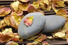 Free Spa Still Life Royalty Free Stock Image - 15016986