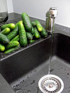 Cucumbers Pickling Stock Photos