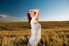 Free Young Woman At Wheat Stock Photo - 15020770