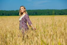 Free Beauty Girl In The Wheat Field Royalty Free Stock Images - 15021459
