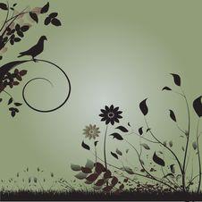 Free Floral Design Stock Photos - 15021723
