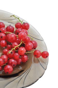 Free Red Currant On A Dish Stock Photography - 15026902
