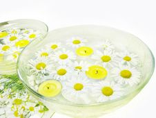 Free Spa Candles Daisy Flowers Stock Photos - 15027483