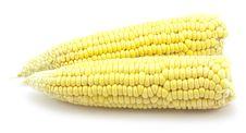 Free Ripe Corn Stock Images - 15028604