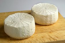Free Cheese Royalty Free Stock Photography - 15028727