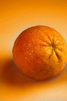 Free Orange Stock Photo - 15028860