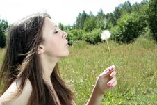 Free Girl Blowing A Dandelion Royalty Free Stock Photo - 15029045