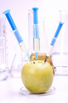 Free Apple In Laboratory Royalty Free Stock Photography - 15029987