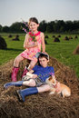 Free Hay Stock Photos - 15038073