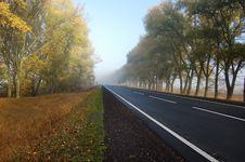 Free Stripes Of Road Stock Photo - 15030990