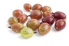 Free Gooseberries Stock Images - 15031054