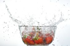 Free Strawberries Stock Photos - 15031473