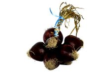 Free Red Onion Royalty Free Stock Photos - 15032938