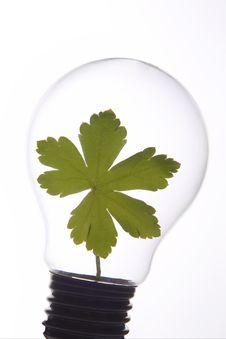 Free Green Light Stock Photography - 15034452