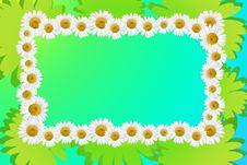 Free Frame Flower Stock Images - 15034594
