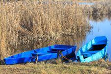 Free Pair-oar Royalty Free Stock Photos - 15035838