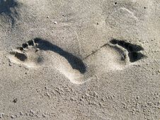 Free Human Footprints On A Beach Royalty Free Stock Photography - 15036627